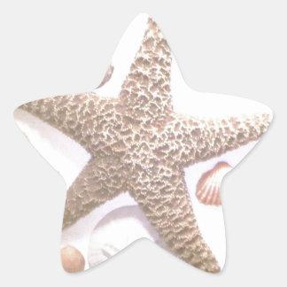 Hon säljer snäckor stjärnformat klistermärke