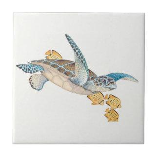 Honu (grön havssköldpadda) liten kakelplatta