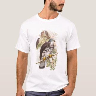 Honung-Vråk John Gould fåglar av Storbritannien Tshirts
