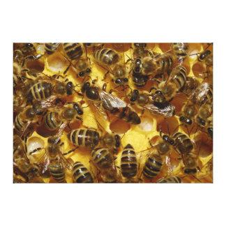 Honungbin i bikupa med drottningen i mittet canvastryck