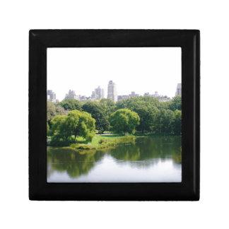 Horisont för NYC Central Park Smyckeskrin