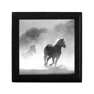 horse-430441 presentskrin