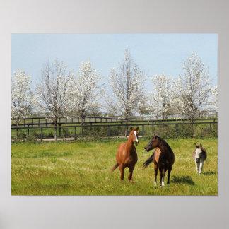 Horseplay: Två hästar och en åsna i vår Poster