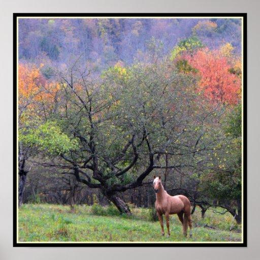 Höst i häst fruktträdgård affisch