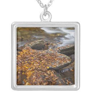 Höst löv längs tittar Glass bäck i Silverpläterat Halsband