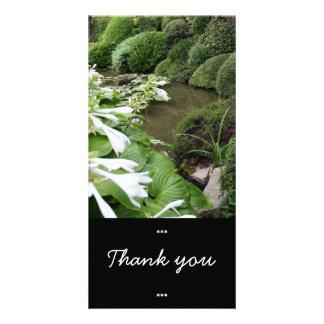 Hosta i en Zenträdgård - tackkort Fotokort