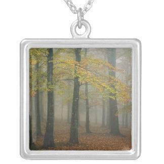 Hösten beskådar av den dimmiga skogen, farfar 3 silverpläterat halsband