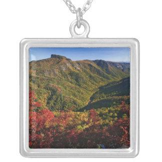 Hösten beskådar av den Linville klyftan som ofta Silverpläterat Halsband