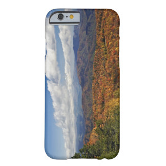 Hösten beskådar av sydliga Appalachian berg Barely There iPhone 6 Skal