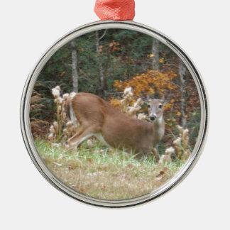 Hösthjort i sjöarrowheaden GA Rund Silverfärgad Julgransprydnad