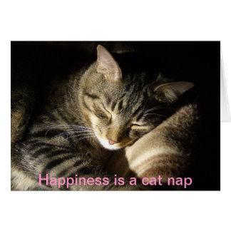 HPIM0382 lycka är en katt ta sig en tupplur Hälsningskort