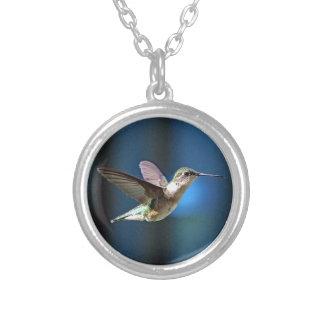 Hummingbird 424 silverpläterat halsband