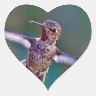 Hummingbird-691 Hjärtformat Klistermärke