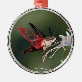 Hummingbird Clearwing Julgransprydnad Metall