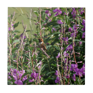 Hummingbird i lilor kakelplatta