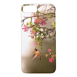 Hummingbird och blommor