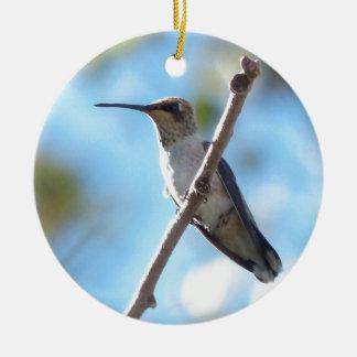 Hummingbird på en gren julgransprydnad keramik
