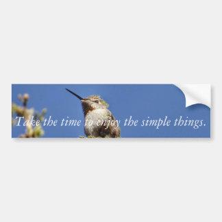 Hummingbird på gren vid SnapDaddy Bildekal