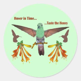 Hummingbird Runt Klistermärke