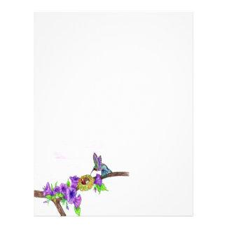 Hummingbird som matar barn brevhuvud