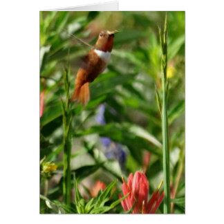 Hummingbirdblommor Hälsningskort