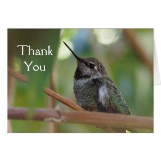Hummingbirden tackar dig att card hälsningskort