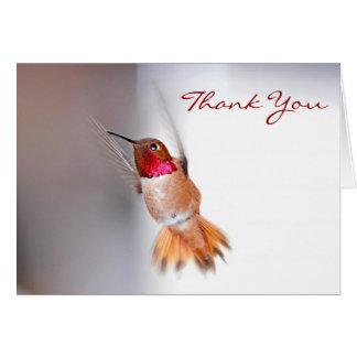 Hummingbirdflygfoto Hälsningskort