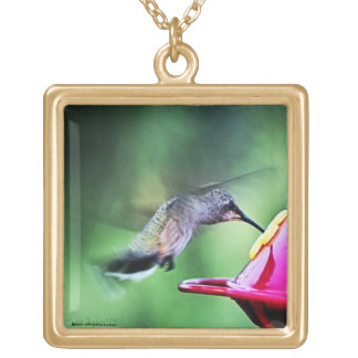 Hummingbirdhalsband Guldpläterat Halsband