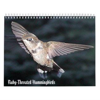 Hummingbirdkalender 3 kalender