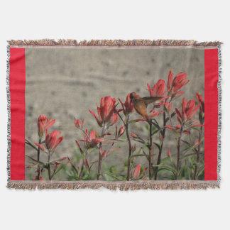 hummingbirdkardinal flw. mysfilt