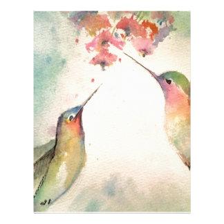 hummingbirds brevhuvud