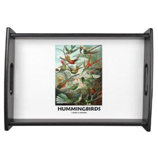 Hummingbirds Ernest Haeckel Artforms av naturen Serveringsbricka