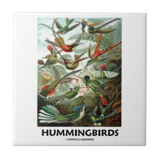 Hummingbirds Liten Kakelplatta