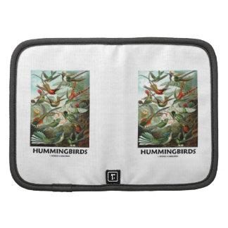 Hummingbirds Organizer