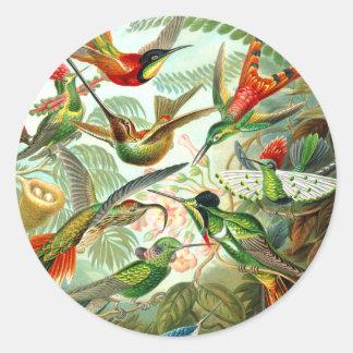 Hummingbirds Runt Klistermärke