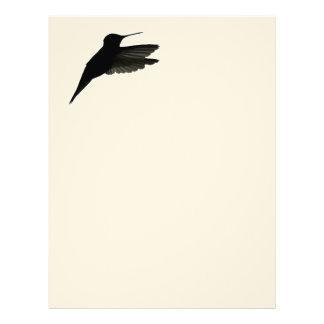 HummingbirdSilhouette Brevhuvud