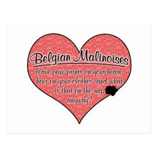 Humor för hund för belgareMalinois tass avtryck Vykort