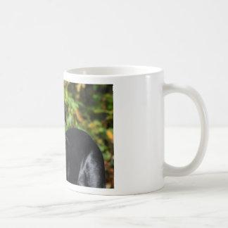 Hund Beauceron Kaffemugg