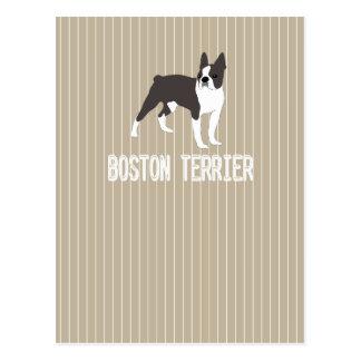 Hund-Boston Terrier Vykort