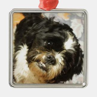Hund för FB_IMG_1481505521015 Shitzu Julgransprydnad Metall