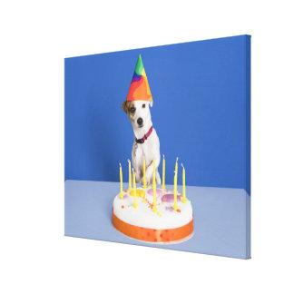 Hund för jackRussell Terrier som ha på sig partyha Sträckt Kanvastryck