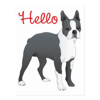 Hund för valp för hejBoston Terrier Vykort