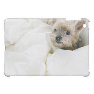 Hund i säng iPad mini fodral