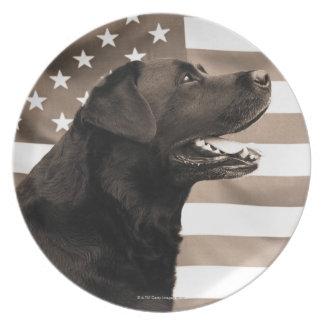 Hund och amerikanska flaggan tallrik