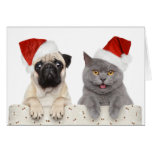 Hund och katt i röd julhatt hälsningskort