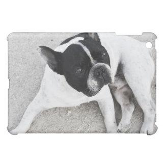 Hund på grus iPad mini mobil skydd