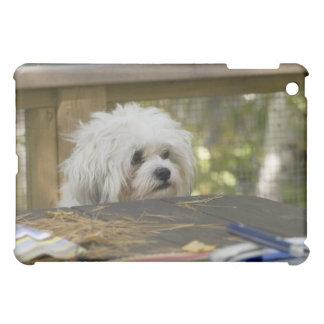 Hund på picknickbord iPad mini mobil skydd