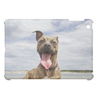 hund på stranden iPad mini skydd