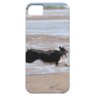 Hund som jagar en boll på stranden iPhone 5 fodraler