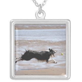 Hund som jagar en boll på stranden silverpläterat halsband